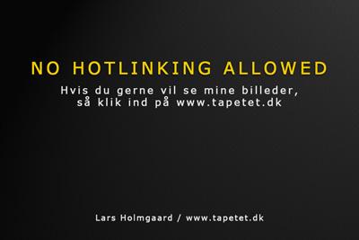 Undgå Hotlinking